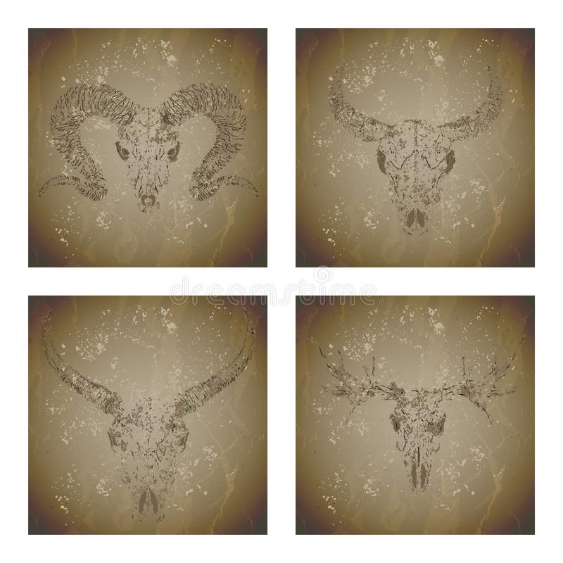 Ensemble de vecteur de quatre illustrations avec le buffle sauvage, la RAM, les orignaux et le taureau de crânes grunges de silho illustration de vecteur