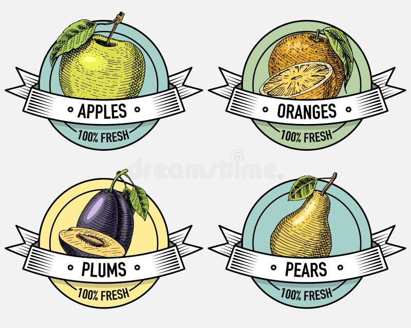 Ensemble de vintage de labels, d'emblèmes ou de logo pour la nourriture vegeterian, fruits tirés par la main ou gravés Rétro styl illustration stock