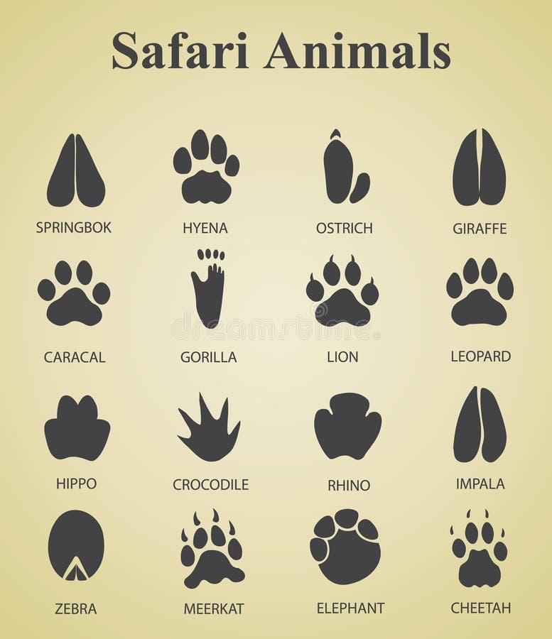 Ensemble de voies d'animal de safari illustration stock