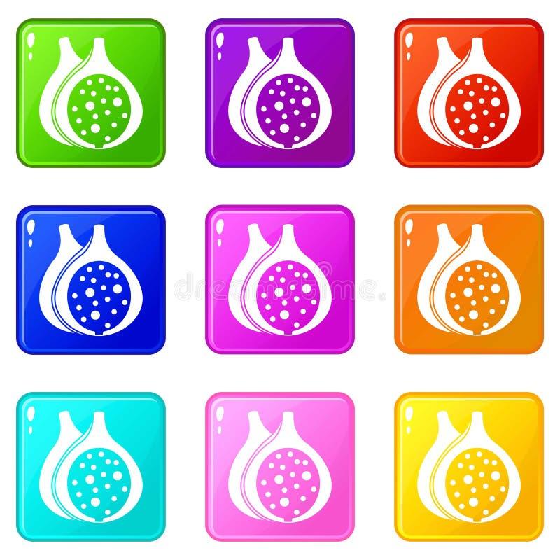 Ensemble des icônes 9 de fruit de figue illustration libre de droits