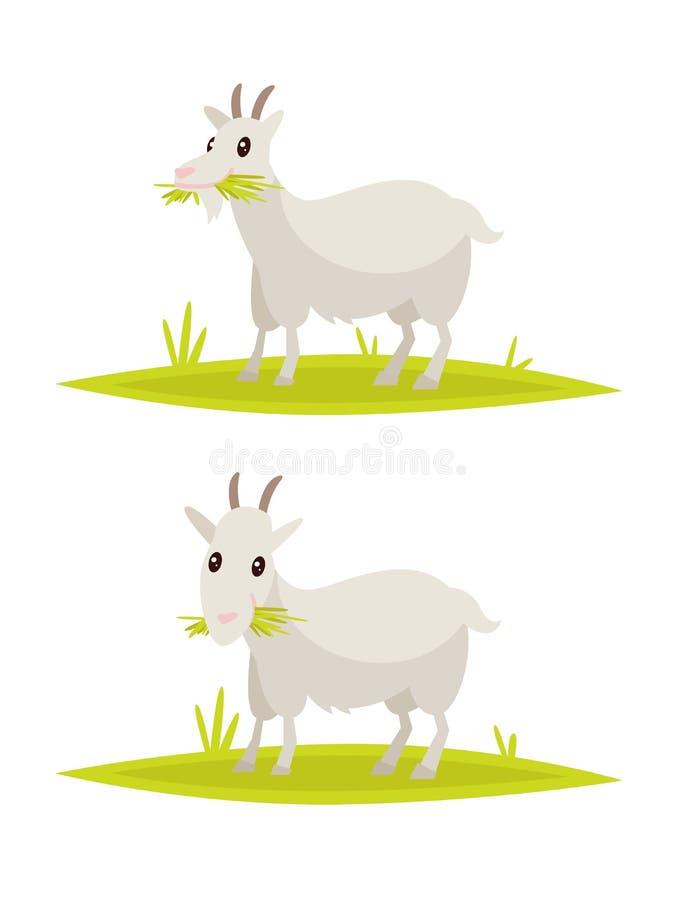 Download Ensemble Drôle De Chèvre Illustration De Vecteur Illustration Stock - Illustration du gris, retrait: 76079435