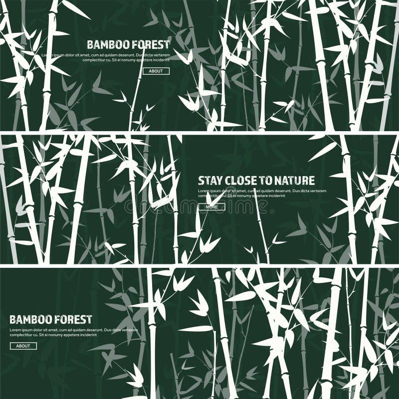 Ensemble en bambou de forêt nature Le Japon ou la Chine Arbre de plante verte avec des feuilles Forêt tropicale en Asie illustration de vecteur