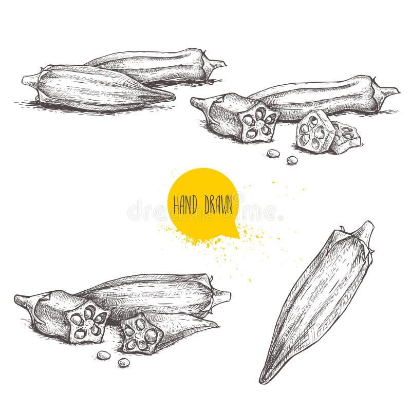 Ensemble exotique de gombo de légumes de style tiré par la main de croquis Collection d'illustrations de vecteur de nourriture sa illustration de vecteur