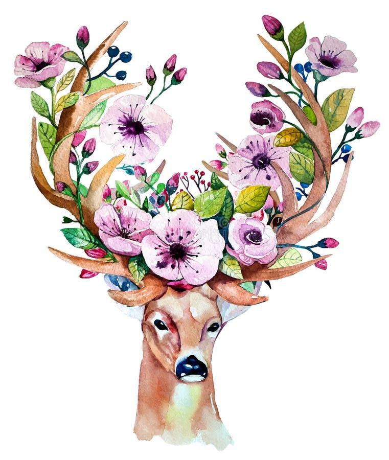 Ensemble floral tiré par la main d'aquarelle de vecteur avec des cerfs communs illustration de vecteur
