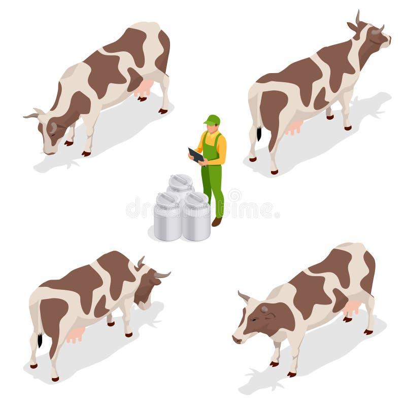 Ensemble isométrique de cheptels laitiers Agriculteur rassemblant le lait à sa collection de vaches à exploitation laitière D'iso illustration libre de droits