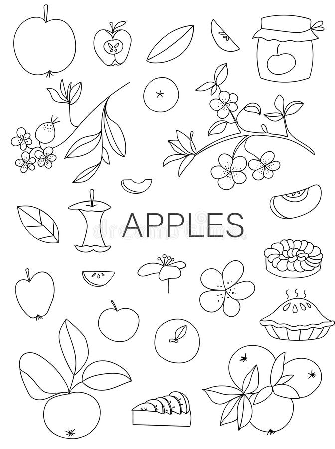 Ensemble noir et blanc de vecteur de pommes tirées par la main mignonnes, tarte aux pommes, fleurs, pot de confiture illustration libre de droits