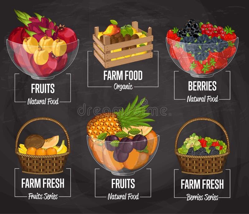 Ensemble organique de concept de fruit de ferme illustration stock