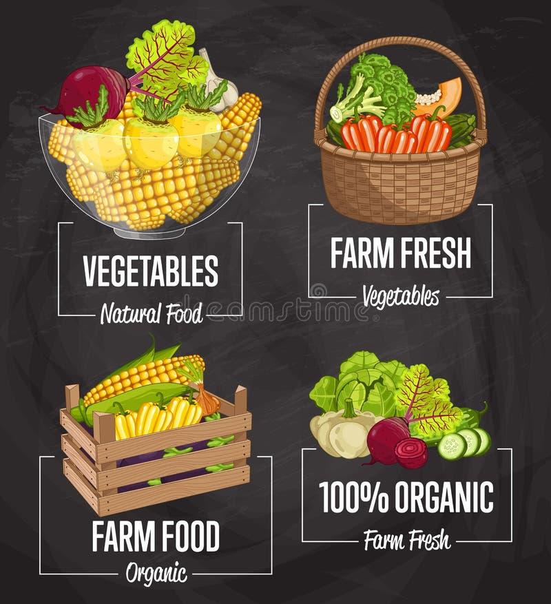 Ensemble organique de concept de nourriture de ferme illustration stock