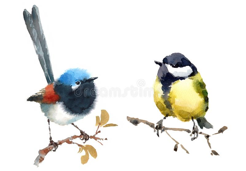 Ensemble peint à la main féerique d'illustration d'aquarelle d'oiseaux de roitelet et de mésange deux d'isolement sur le fond bla illustration libre de droits