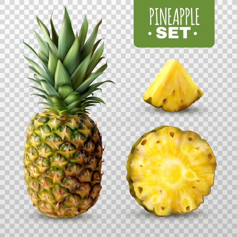 Ensemble réaliste d'ananas illustration de vecteur