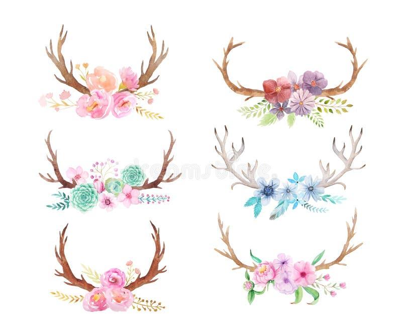 Ensemble rustique d'aquarelle de fleurs et de feuilles illustration libre de droits