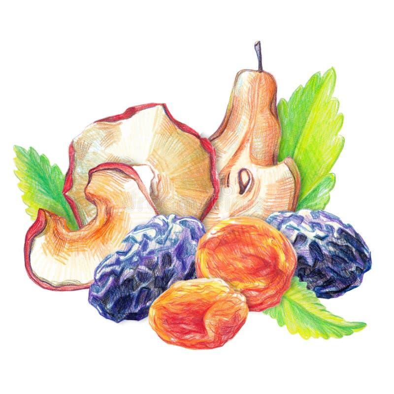 Ensemble sec de fruit illustration stock