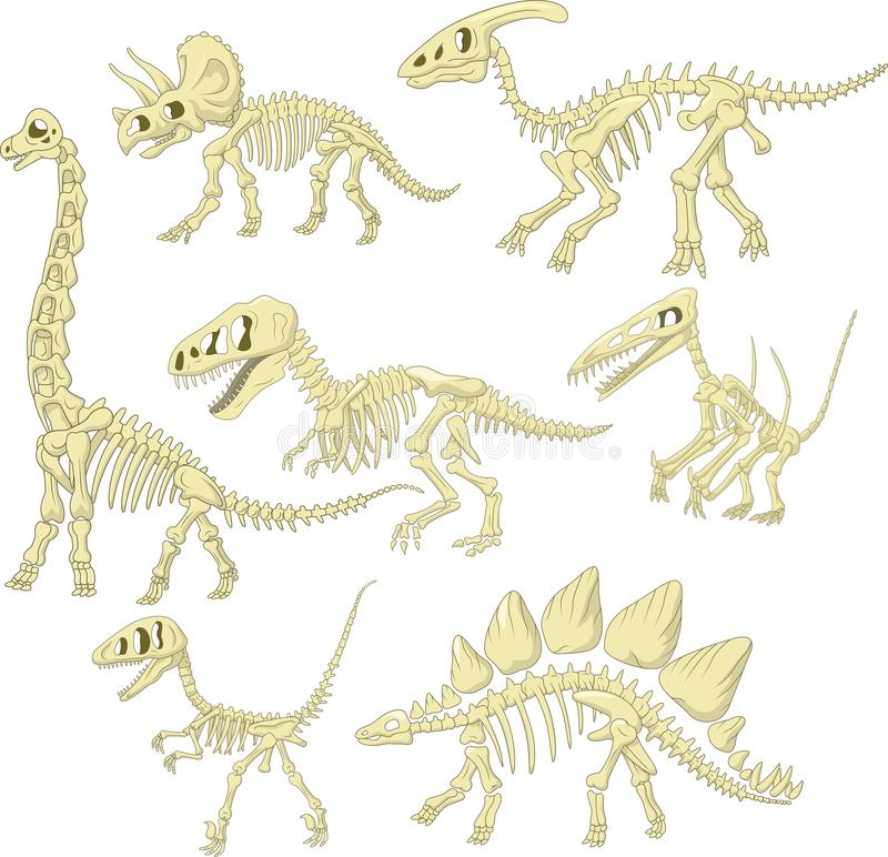 Ensemble squelettique de collection de dinosaures de bande dessinée illustration de vecteur
