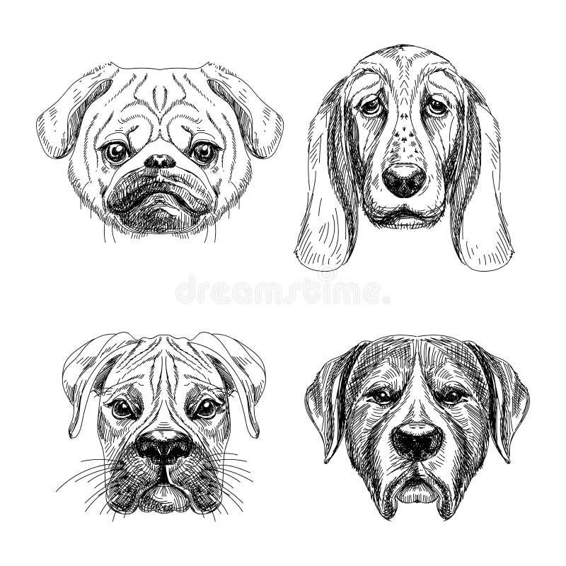 Ensemble tiré par la main de vecteur de quatre visages du chien illustration de vecteur