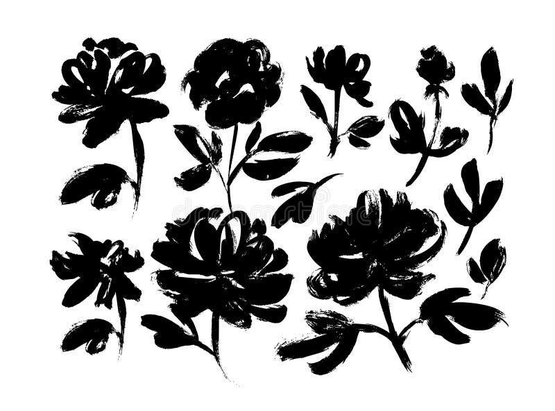 Ensemble tiré par la main de vecteur de fleurs de ressort Les roses, pivoines, chrysanthèmes ont isolé des cliparts illustration de vecteur