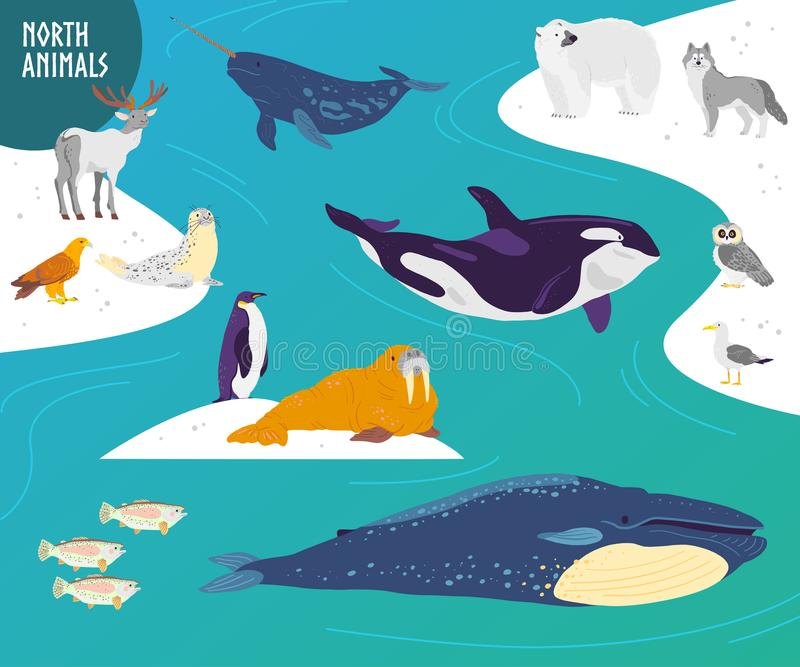 Ensemble tiré par la main plat de vecteur d'animaux du nord, oiseaux, poissons : ours blanc, hibou, baleine, pingouin illustration libre de droits