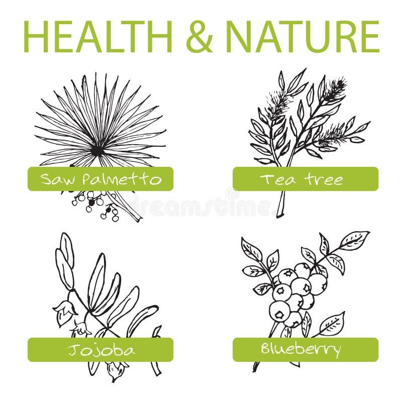 Ensemble tiré par la main - santé et nature Collection de illustration de vecteur