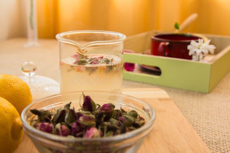 Ensemble tonique de procédé de préparation de thé de Rose photographie stock