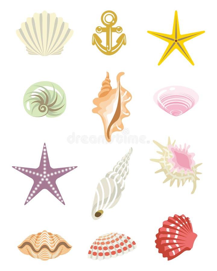 Ensemble tropical de Shell illustration libre de droits