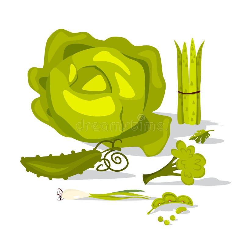 Ensemble végétal vert Collection d'aliment biologique naturel illustration libre de droits
