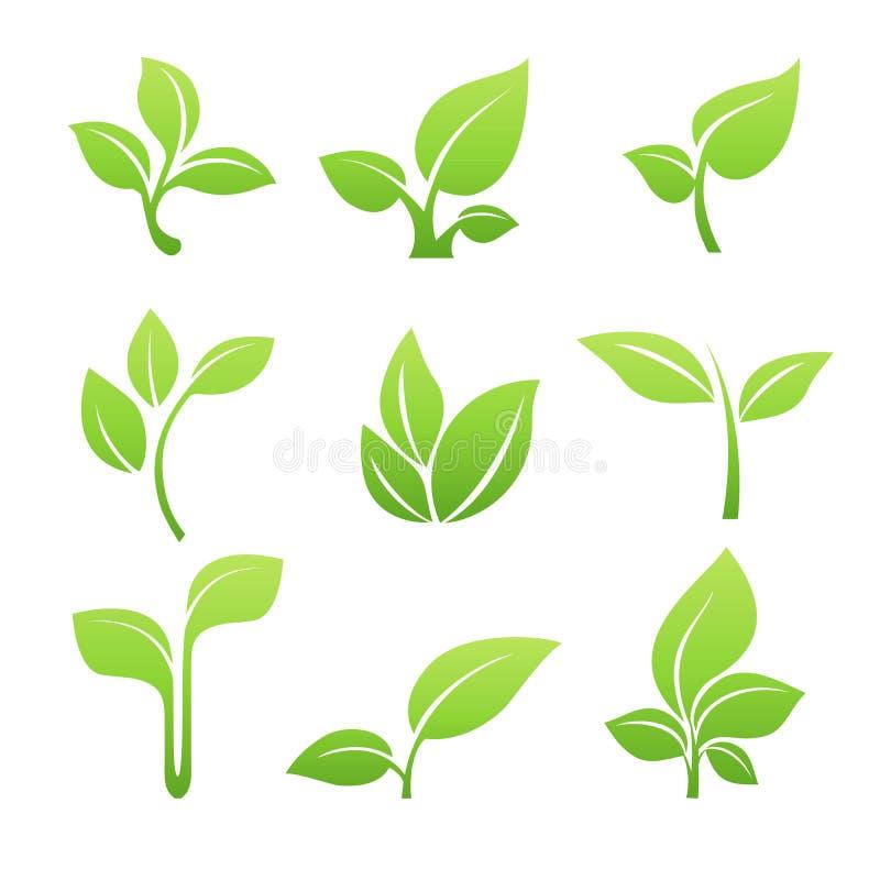 Ensemble vert d'icône de vecteur de symbole de pousse illustration stock