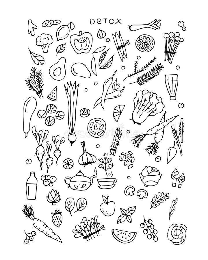 Ensemble vert de légume, detox Croquis pour votre conception illustration stock