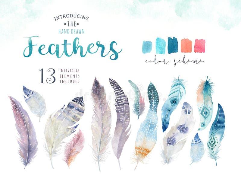 Ensemble vibrant de plume de peintures tirées par la main d'aquarelle Style de Boho illustration libre de droits
