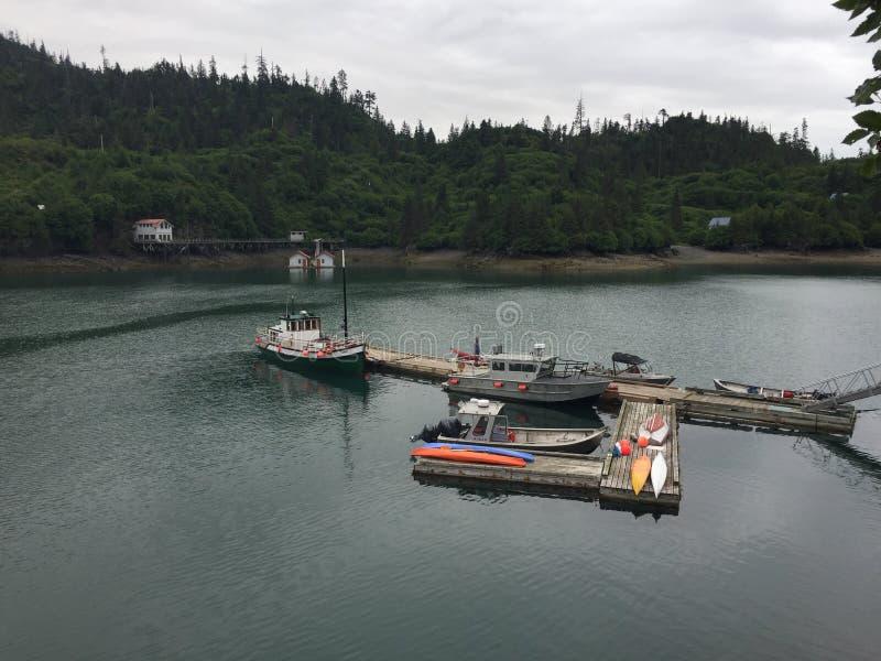Ensenada Alaska del halibut foto de archivo