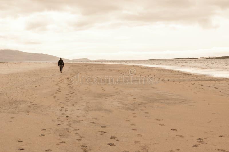 Enslig man som bakifrån tas att gå i en tom strand fotografering för bildbyråer