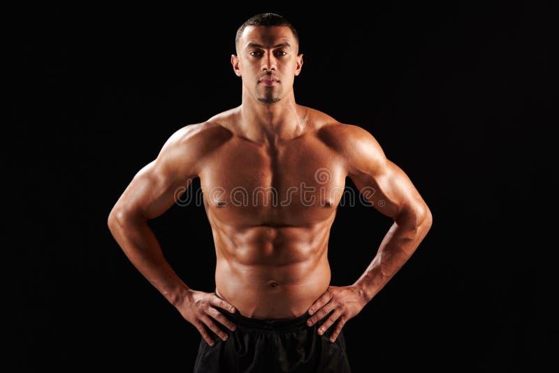 Entblößen Sie chested männlichen Bodybuilder mit den Händen auf Hüften lizenzfreie stockbilder