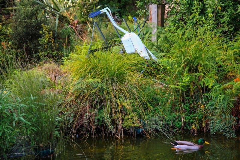Ente auf dem Teich umgeben durch hohes Gras mit Statue des Vogels stockfotografie