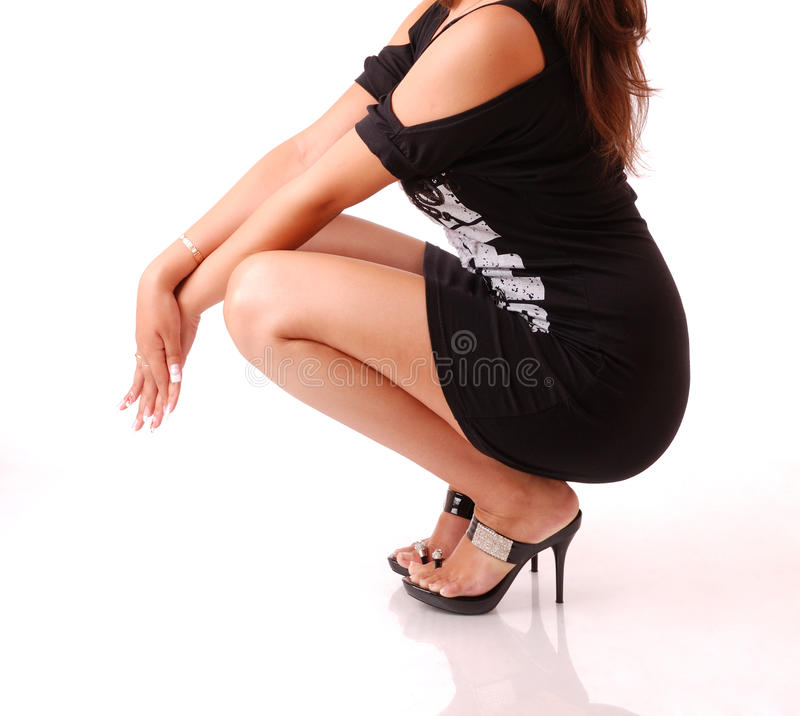 Ente femminile elegante fotografia stock libera da diritti