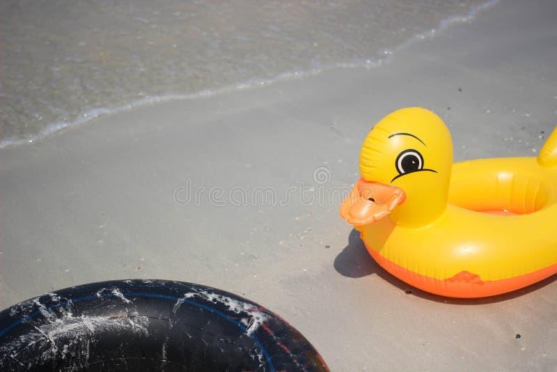 Ente und schwarze Rettungsringe stockfoto