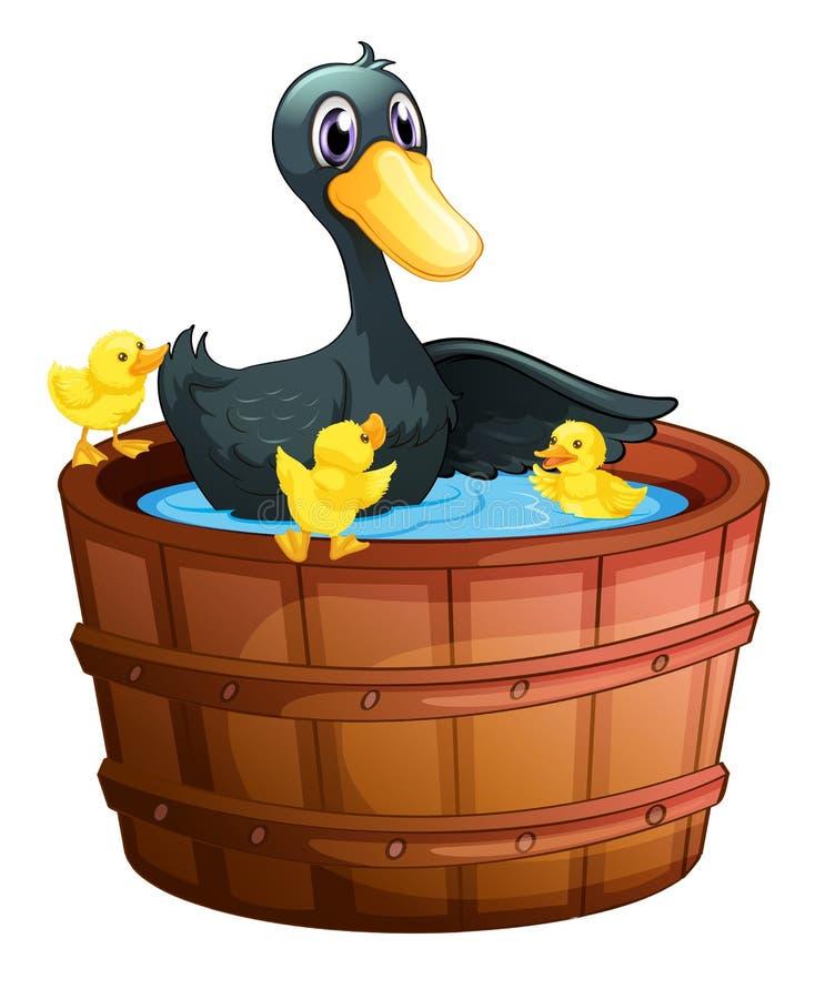 Enten, die ein Bad nehmen vektor abbildung