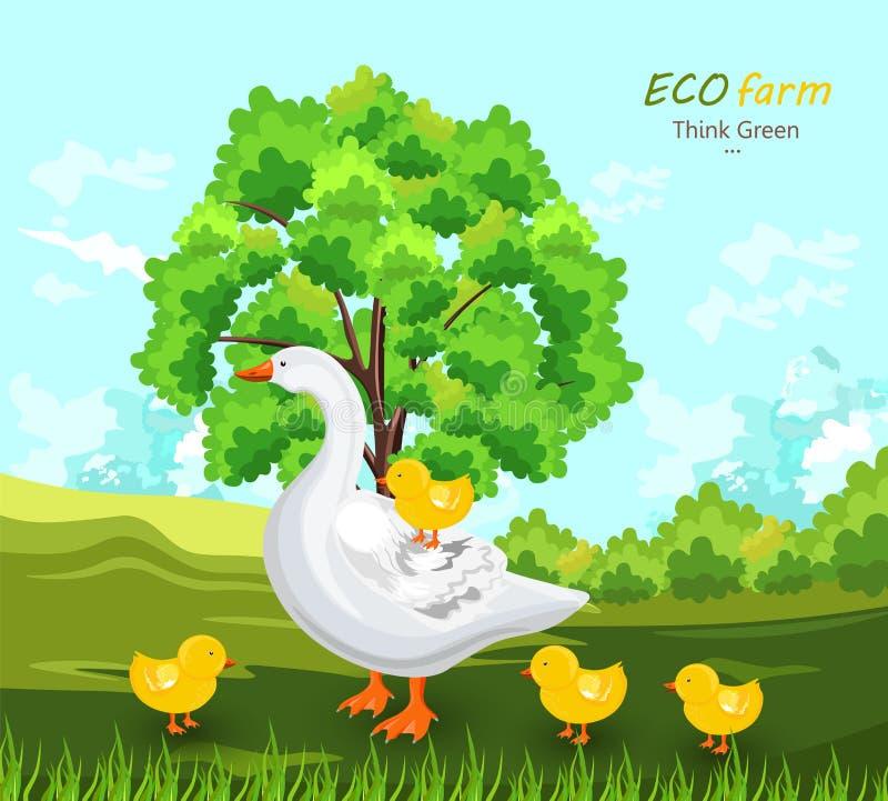 Enten-und Knospen Vektor Eco-Bauernhofkonzept Grüne Sommerhintergründe stock abbildung