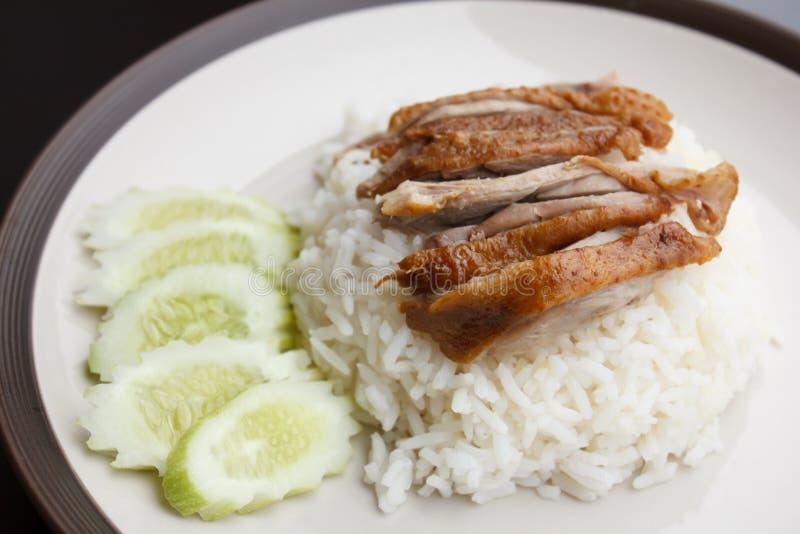 Entenbraten über Reis mit Gurke stockfotos