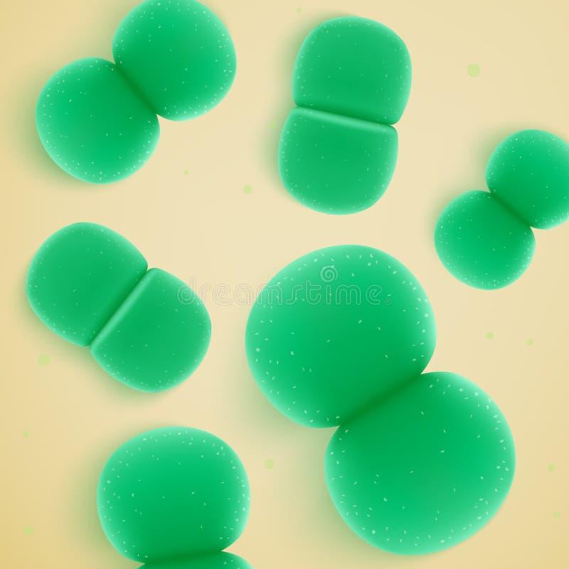 Enterokokke Faecium-Bakterien-realistischer Vektor lizenzfreie abbildung