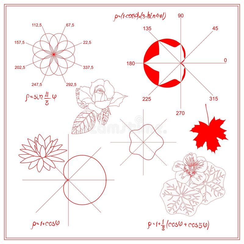 Entertaining Mathematics. Trigonometric functions and algebraic graphs of water lily sheet, maple and nasturtium leaves. Entertaining Mathematics. Trigonometric royalty free illustration