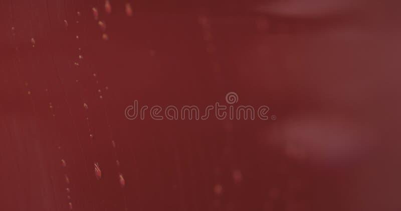 Entfettungsfarbe der roten Waschanlage des Nahaufnahmefokus tränken lizenzfreie stockfotos