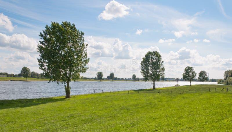 Entlang dem Flussufer in den Niederlanden stockfotos