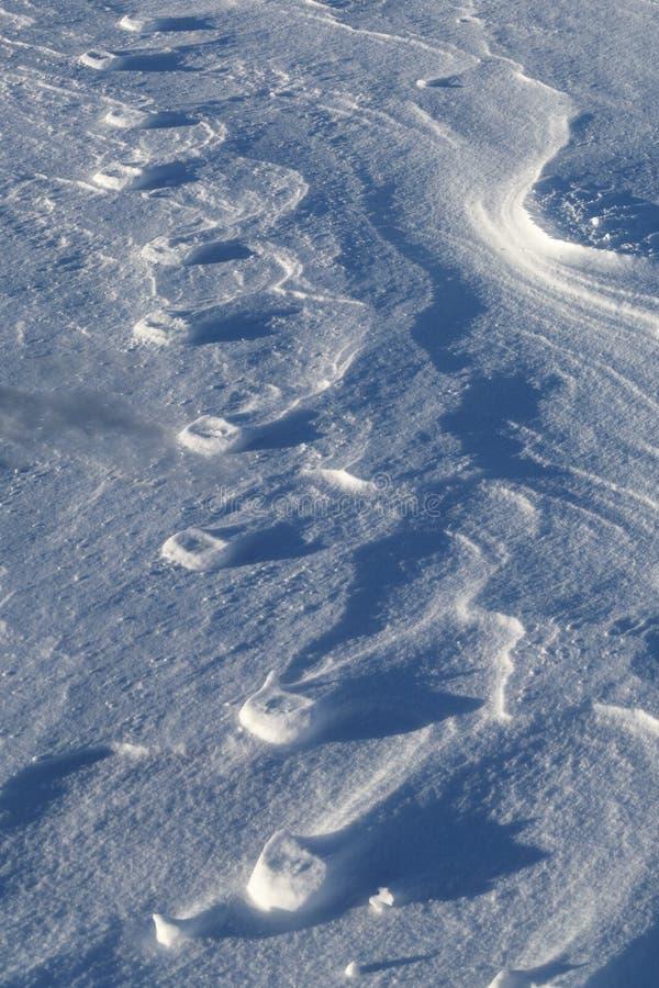 Entlastung von Pfotenabdrücken im Schnee stockbilder