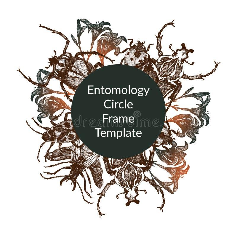 Entomologiczny wektor zaokrąglający ramowy szablon ilustracji