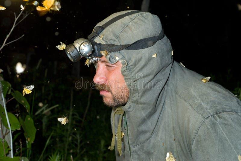Entomologo 11 fotografia stock libera da diritti