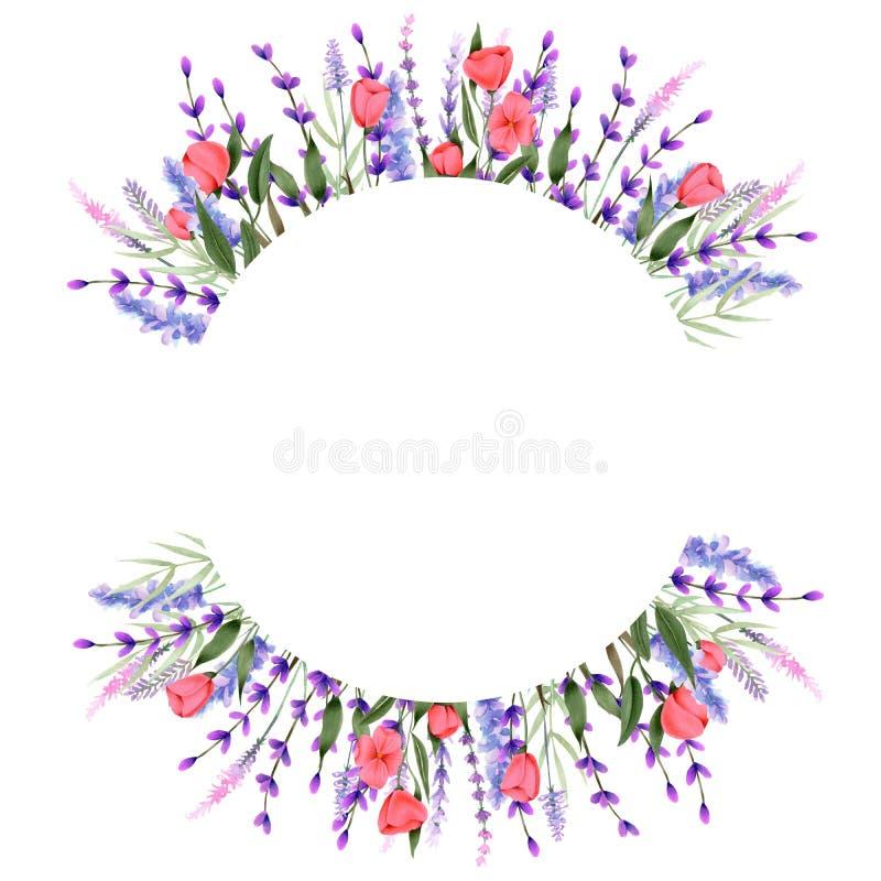 Entourez la frontière de cadre avec les wildflowers et la lavande de rose d'aquarelle illustration libre de droits