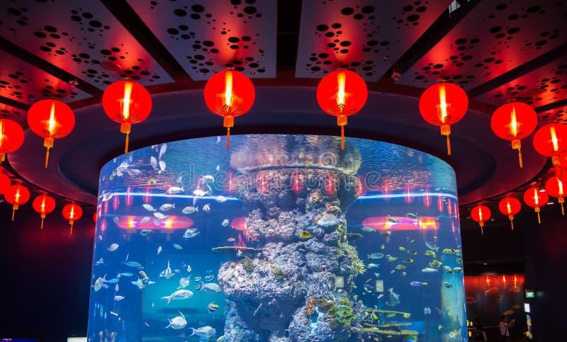 Entourez les lanternes rouges sphériques chinoises autour d'un grand aquarium, Singapour image stock