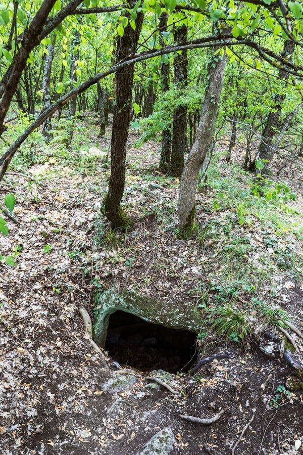 Entrée à la caverne cachée dans les bois photos libres de droits