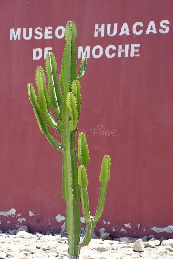 Entrée au musée de Huacas à Trujillo, Pérou photographie stock libre de droits