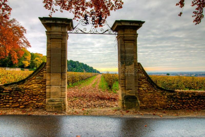 Entrée aux vignes en Provence, France images libres de droits