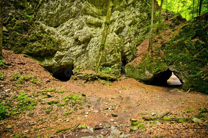 Entrée de caverne photos libres de droits