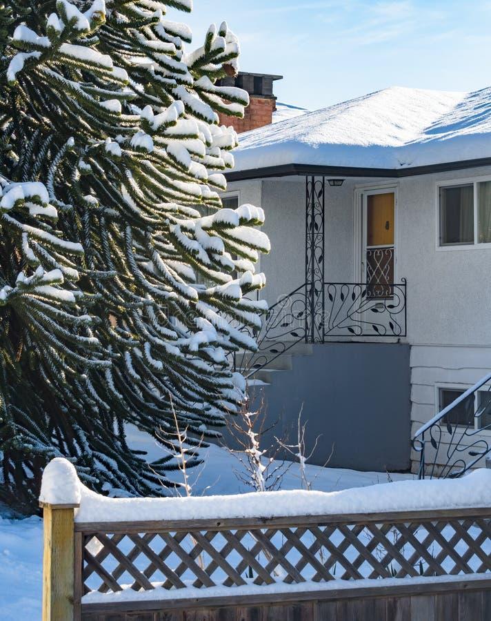 Entrée de maison résidentielle avec l'arbre de singe dans la neige image stock